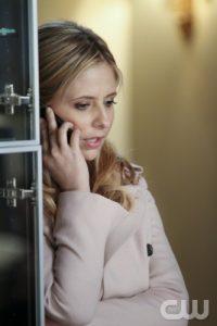 Sarah Michelle Gellar as Bridget Kelly